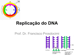 O processo de replicação do DNA