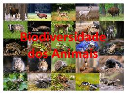 Biodiversidade dos Animais - Centro Educacional 01 de Planaltina
