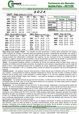 Fazer do Relatório Diário de 06/11/2008