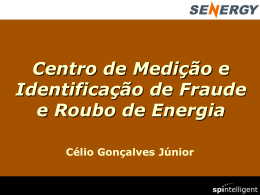 Metering Centre and Fraud Identification for Energy