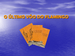 O ÚLTIMO VÔO DO FLAMINGO