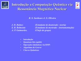 Ressonância Magnética Nuclear (Pulsada) Aplicada à