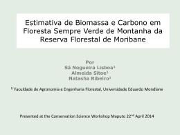 Estimativa de Biomassa e Carbono em Floresta sempre verde de
