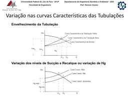 Capítulo 1 Conceitos Fundamentais - Universidade Federal de Juiz