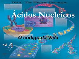 Ácidos Nucléicos Timina