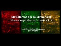 Eletroforese em gel diferencial