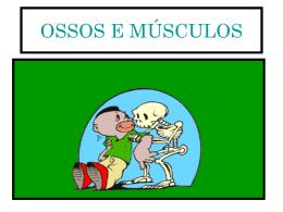 sistema locomotor - Escola Monteiro Lobato