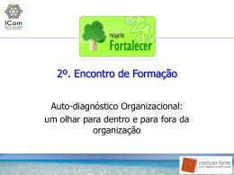 O que é Diagnóstico Organizacional?