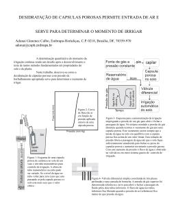 desidratação de capsulas porosas permite entrada de ar e serve