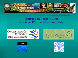 Interfaces entre a CDB e outros Fóruns Internacionais