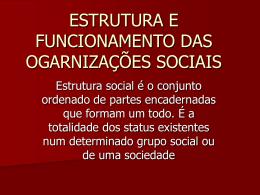 ESTRUTURA E FUNCIONAMENTO DAS OGARNIZAÇÕES SOCIAIS
