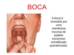 BOCA - medicina