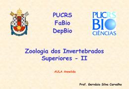 Annelidaa
