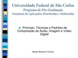 Universidade Federal de São Carlos Programa de Pós