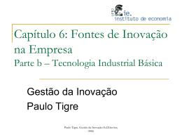Capítulo 6b: Fontes de Inovação na Empresa Parte b – Tecnologia