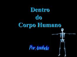 Por dentro do corpo humano