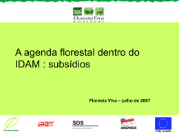 A agenda florestal dentro do IDAM