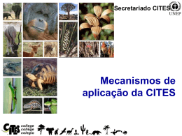 Mecanismos de aplicação da CITES