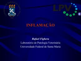INFLAMAÇÃO Rafael Fighera