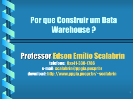 Por que Construir um Data Warehouse ?