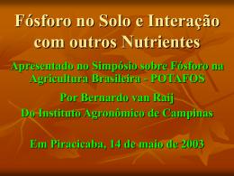 Fósforo no Solo e Interação com outros Nutrientes