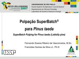 Polpação SuperBatch para Pinus taeda