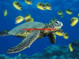 conceitos ecológicos (1473536)