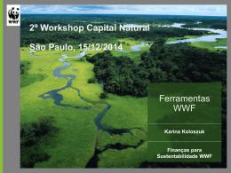 Apresentação Karina Koloszuk – WWF