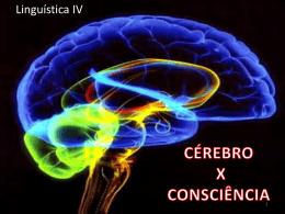 Cérebro x consciência