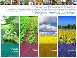Projeto Paraná Biodiesel