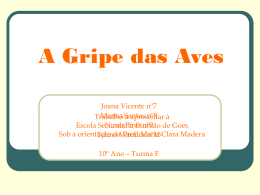 A Gripe das Aves - TIC ON-LINE