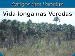 Vida Longa nas Veredas - AMIVER - Comitê de Bacia Hidrográfica