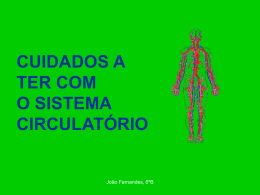 Cuidados a ter com o sistema circulatório