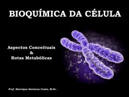 Bioquímica da célula I