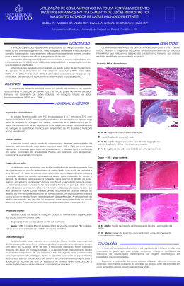 Grupo II – PBS + células-tronco