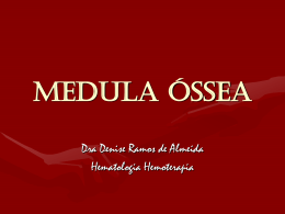 MEDULA Óssea - Prefeitura de Passo Fundo