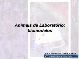 Biomodelos (por Carla Eponina)