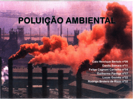 Poluição Ambiental - Colégio Santa Maria
