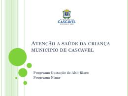 Atenção a saúde da criança município de cascavel