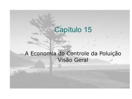 Economia do Controle da Poluição