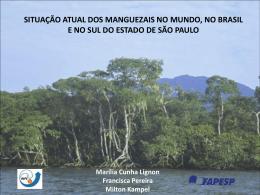 mangroves - DPI