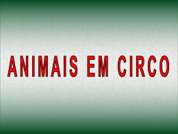Animais em Circos
