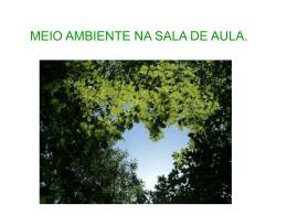 meioambientenasaladeaula