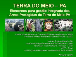 Subsídios para a criação do Mosaico da Terra do Meio-PA