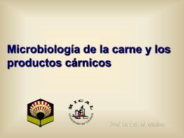 Métodos rápidos e automatizados em Microbiologia dos Alimentos