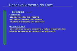 Anomalias na formação da face