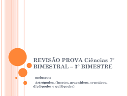 REVISÃO PROVA BIMESTRAL – 3º BIMESTRE