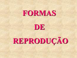 Reprodução - Colégio Machado de Assis