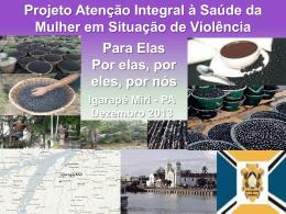 Rede de Atenção Conceitos Igarape (Slides)