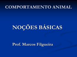 Questões últimas - MARCOS FILGUEIRA